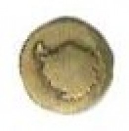 Antarctica Disk - Bronze Device for Coast Guard Service