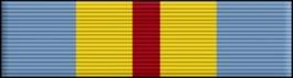 Defense Distinguished Service Thin Ribbon
