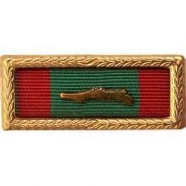 Vietnam Civil Action Unit Citation Thin Ribbon