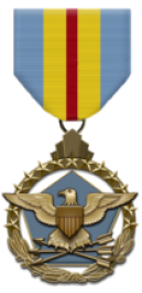 Defense Distinguished Service Medal - Large