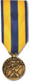 Navy Expeditionary Medal - Mini