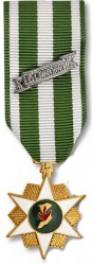 Vietnam Campaign Medal - Mini