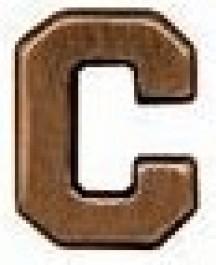 "Combat Conditions ""C"" - 1/8 inch Bronze"
