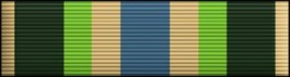 Armed Forces Service Thin Ribbon
