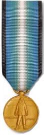 Antarctica Service Medal - Mini