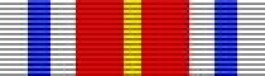 Basic Training Honor Grad Thin Ribbon