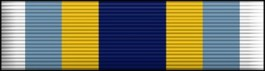 Basic Training Honor Graduate Thin Ribbon