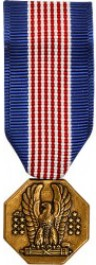 Soldier's Medal - Mini