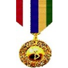 Inter-American Defense Board Medal Medal - Large for Coast Guard Service